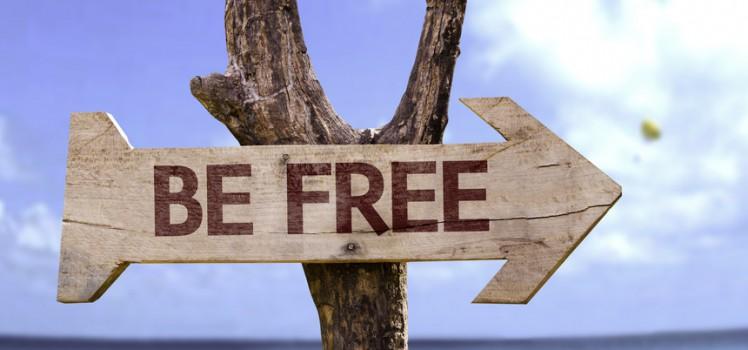 Bee free - Treffpunkt Philosophe