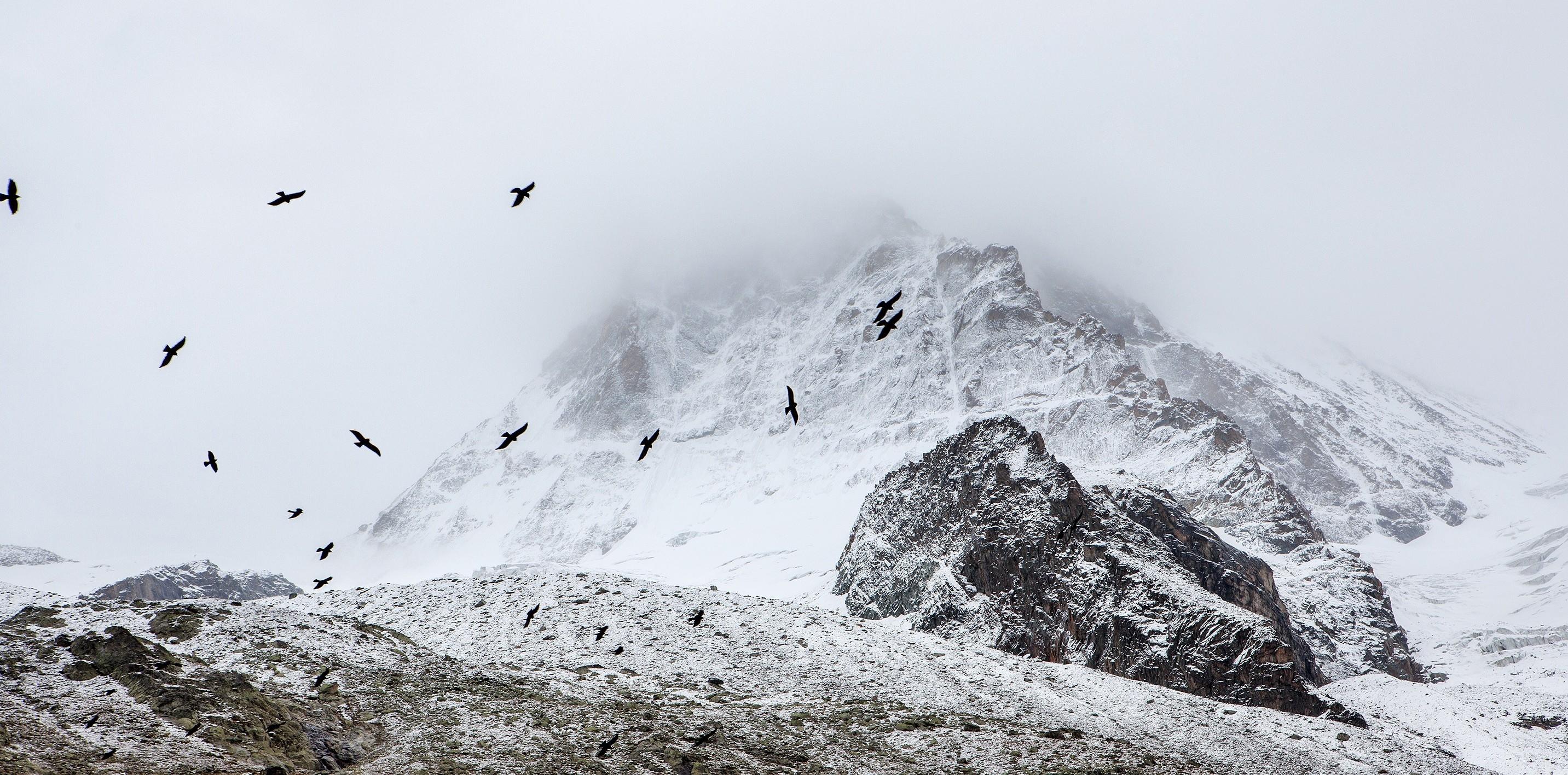 Berge kälte streit