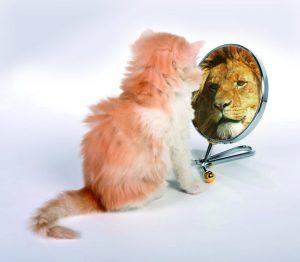 Selbstvertrauen