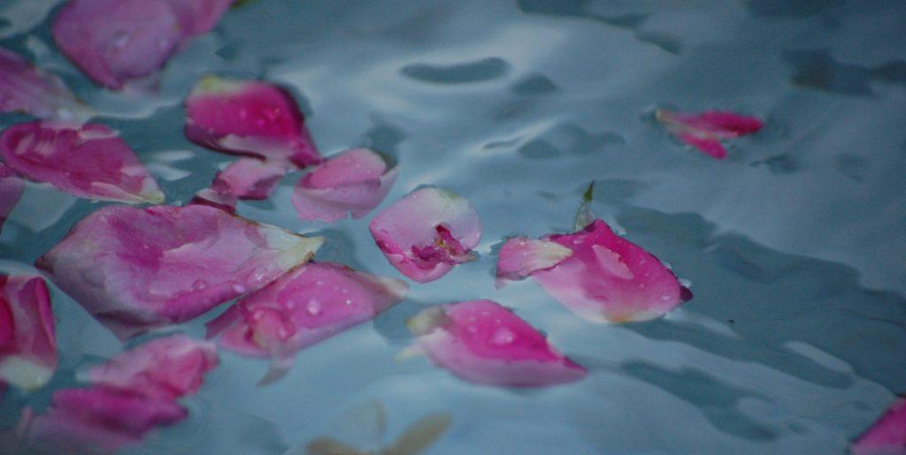 Blüten Stoiker