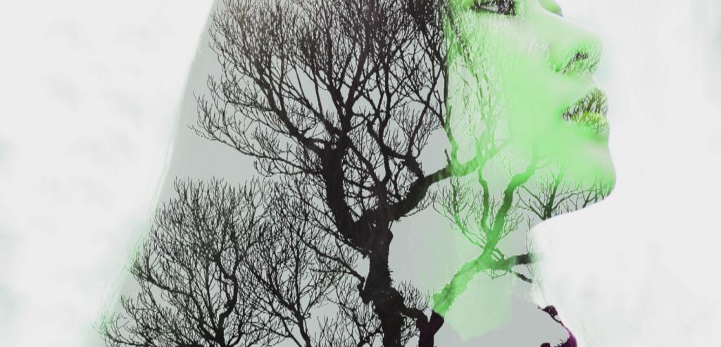 Säule, Bäume