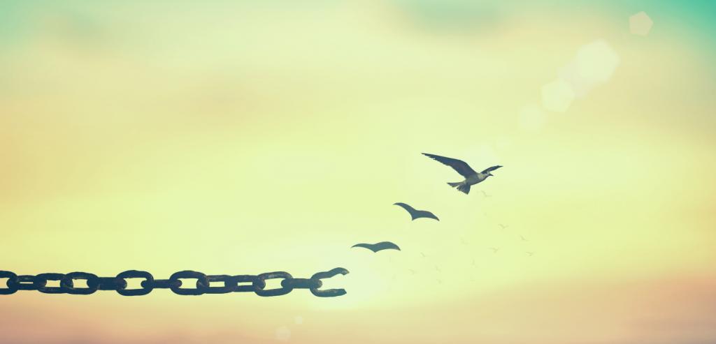 Ausbruch Freiheit